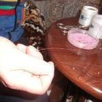 Плетемо квітка з бісеру до 8 березня своїми руками