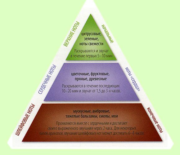 Піраміда: ноти парфуму