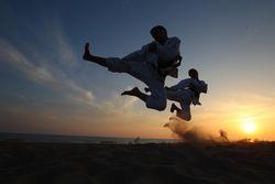 Яке бойове мистецтво вибрати