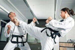 Найбільш бойовий вид спорту, Самий видовищний вид спорту, Сучасні бойові мистецтва,