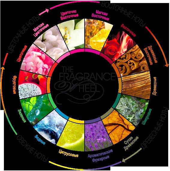 Класифікація ароматів в сучасній парфумерії