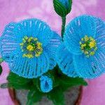 Майстер-клас плетіння блакитного гімалайського маку з бісеру