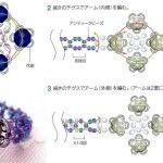Схема плетіння кільця з бісеру