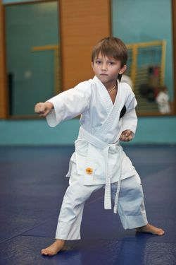 Плюси і мінуси видів бойових мистецтв