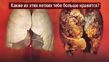шкоду куріння
