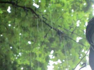 Одеські зливи, одеський дощ.