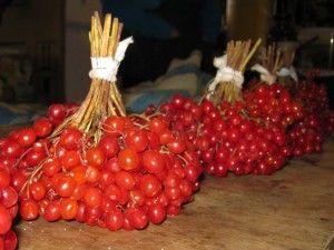 Корисна їжа, калина, ягоди.