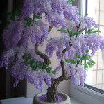 Дерево гліцинії з бісеру